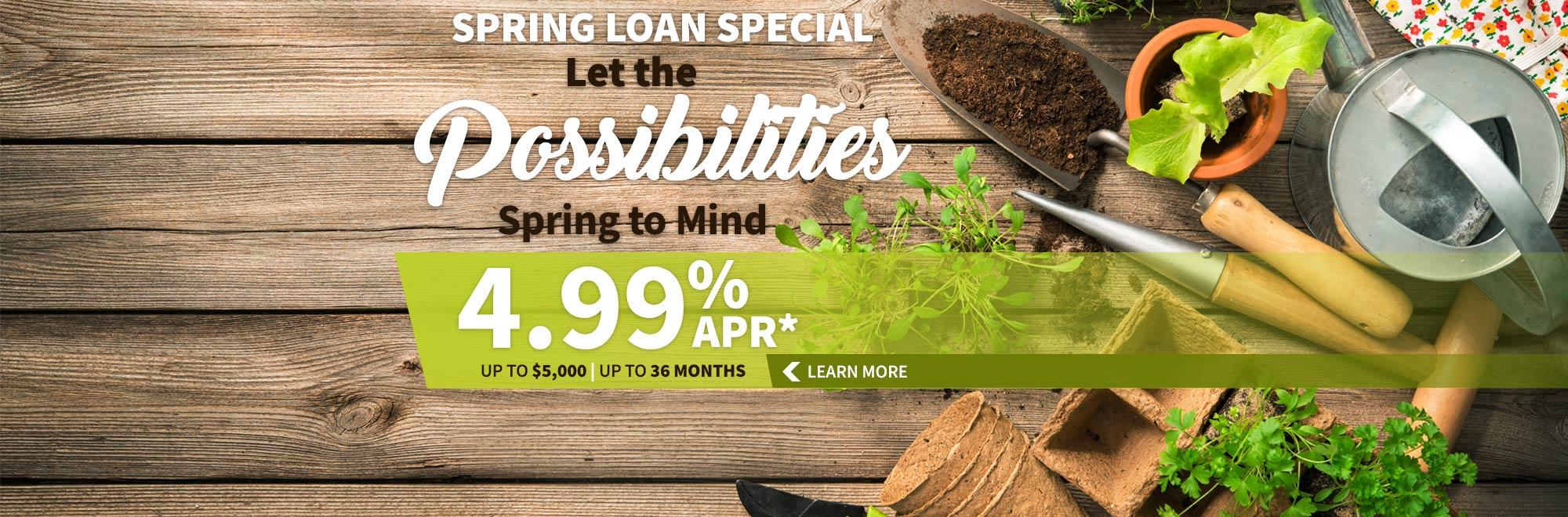 Spring Loan Special
